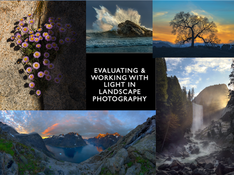 Evaluating Working with Light Webpage Cover